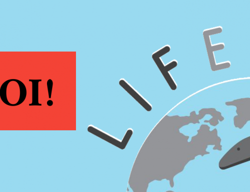 Assegnazione del ruolo di Project Manager di LIFEEL: aperte le selezioni!